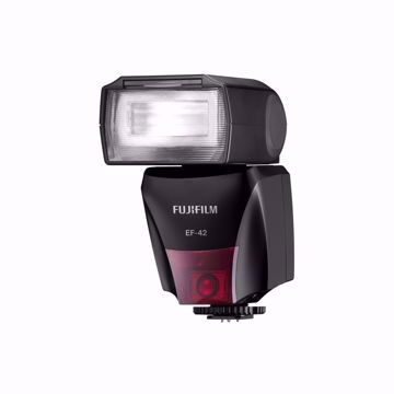 Picture of EF-42 TTL Flash